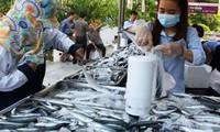 Thế giới tiêu thụ ngày càng nhiều cá