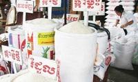 Campuchia sắp tung ra gói cho vay tới 30 triệu USD để bình ổn giá gạo
