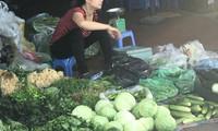 Đà Lạt rau rẻ thối, Hà Nội ăn đồ Tàu: Chờ Bộ trưởng ra tay