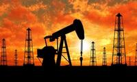Giá dầu thô giảm mạnh kéo chứng khoán Mỹ giảm điểm
