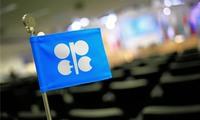 Giá dầu tăng 4% chờ đón thỏa thuận OPEC