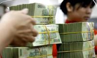 Bao nhiêu ngân hàng có lượng nợ xấu tập trung và quy mô lãi dự thu lớn?