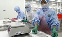 Việt Nam trở thành trung tâm chế biến thủy sản thế giới