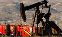 Giá dầu giảm nhẹ, giữ được mốc 45 USD/thùng