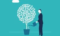 Nhiều tổ chức tài chính, ngân hàng, bảo hiểm vi phạm các quy định trong hoạt động kinh doanh