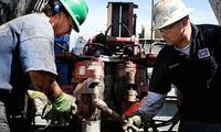 Giá dầu dao động mạnh trong Ngày Bầu cử Mỹ