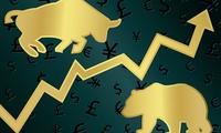 TTF khớp lệnh gần 13 triệu cổ phiếu, VnIndex đánh mất mốc 660 điểm trong phiên giao dịch đầu tuần