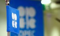 OPEC đạt thỏa thuận lịch sử, thị trường có thể mong đợi điều gì?