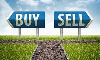 Khối ngoại mua ròng trở lại, VnIndex tăng điểm 9 phiên liên tiếp