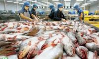 Brazil dừng nhập khẩu cá tra của một công ty Việt Nam