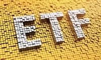 ACBS dự báo CII và HSG sẽ lọt vào danh mục V.N.M ETF trong đợt review cuối năm