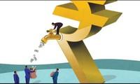 IPA sắp phát hành hơn 29 triệu cổ phiếu thưởng tỷ lệ 50%