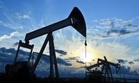 Giá dầu có thể tăng lên 55 USD/thùng nếu cắt giảm sản lượng