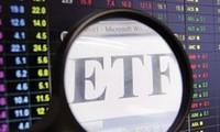 Lợi ích và rủi ro từ các Quỹ đầu tư theo chỉ số