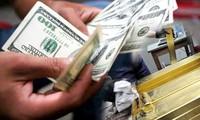 Thủ tướng chỉ đạo quản lý chặt chẽ hạn mức vay trả nợ nước ngoài tự vay, tự trả của DN