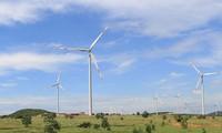Nhà máy điện gió hơn 1.000 tỉ tại Bình Thuận hoạt động
