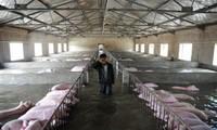 Trung Quốc: lũ lụt hoành hành, ít nhất 128 người chết