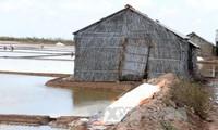 Vẫn còn 44.000 tấn muối tồn kho