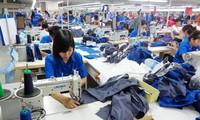 Tăng mức đóng BHXH: 371.000 người lao động có nguy cơ mất việc?