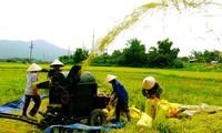 193.000 tỉ đồng vốn ngân sách xây dựng nông thôn mới trong 5 năm tới