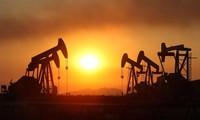 OPEC lạc quan về triển vọng tái cân bằng thị trường dầu mỏ 2017