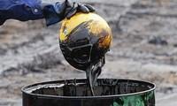 Giá dầu dò đáy hơn 1 tháng sau số liệu trữ lượng dầu thô tăng kỷ lục