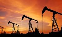 OPEC dự báo tình trạng dư thừa nguồn cung dầu mỏ sẽ giảm