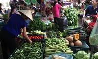 Sau bão số 3, thị trường rau xanh tăng giá gấp đôi