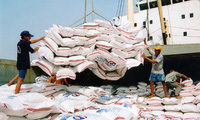 Chuyên gia WB khuyến cáo Việt Nam cần định vị thương hiệu gạo