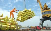 Thương hiệu nông sản Việt xuất khẩu: Bao giờ chính danh?