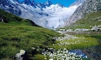 Ngất ngây trước vẻ đẹp của những vùng đất như thiên đường