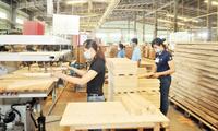 Cổ phiếu TTF vừa tăng trần 4 phiên liên tiếp, Tân Liên Phát đăng ký bán gần 30 triệu cổ phiếu