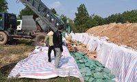 Quảng Bình tiêu hủy trên 606 tấn hải sản tồn kho