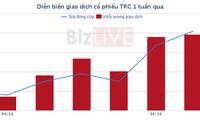 [Cổ phiếu nổi bật tuần] TRC hưởng lợi khi giá cao su phục hồi