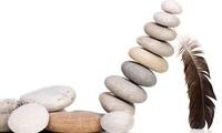 ROS, VNM, HSG, VCS, SBT, ELC, PIV, PTI, LSS, HAP, TET, APG: Thông tin giao dịch lượng lớn cổ phiếu