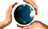 TTF, BCG, SHS, SDH, CDO, TNT, HVA, DLR: Thông tin giao dịch lượng lớn cổ phiếu