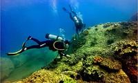 1,5 triệu m3 chất thải đổ sát khu bảo tồn biển?