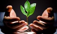 Một trong những quỹ đầu tư lớn nhất Việt Nam đã thắng lớn nhờ đặt cược vào Thế giới di động