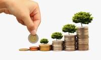 REE, VNE, TMS, DPR, VOC, OPC, TS4: Thông tin giao dịch lượng lớn cổ phiếu