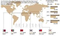 [Infographics] Những thị trường nào đang thu hút lao động Việt Nam?