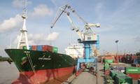 SSI Research: Đến thời của cảng Cái Mép và VIP Green