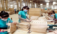 Áp thuế Trung Quốc, thị trường gỗ 30 tỉ USD rộng cửa với Việt Nam