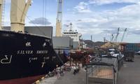 Phó thủ tướng yêu cầu thanh tra cổ phần hóa Cảng Quy Nhơn, ai là cổ đông lớn nhất?
