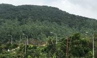 Đà Nẵng phê duyệt quy hoạch phía đông và bán đảo Sơn Trà