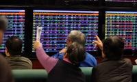 2016 - Năm thăng trầm của cổ phiếu khoáng sản