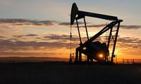 Dầu khí đá phiến đe dọa thỏa thuận cắt giảm sản lượng của OPEC