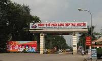Sau khi mua thép Việt Ý, công ty Thái Hưng vừa trở thành cổ đông lớn của Gang thép Thái Nguyên