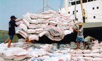 Thủ tướng yêu cầu đẩy mạnh hoạt động xuất khẩu gạo