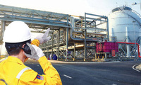 PV Gas chuyển nhượng quyền sử dụng đất ở Vũng Tàu cho công ty con CNG Việt Nam