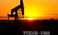Lo ngại dư thừa nguồn cung, giá dầu thế giới giảm